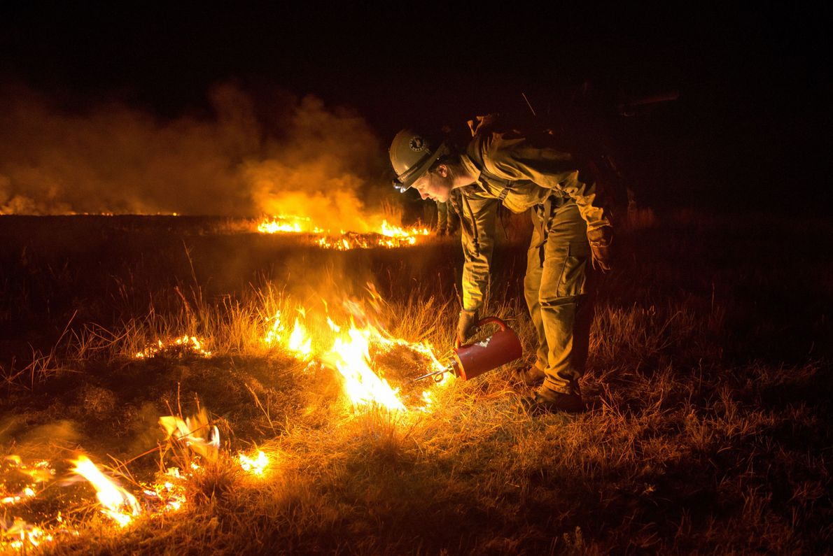 Combatir el fuego con fuego