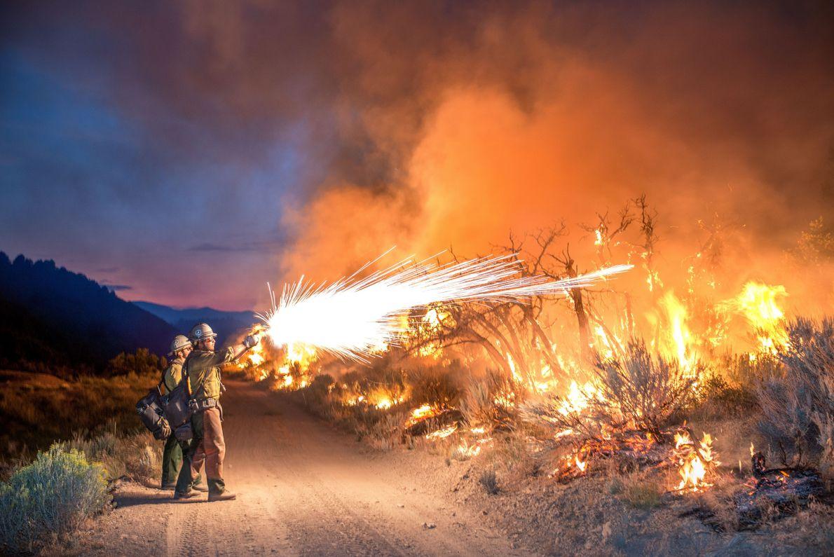Lucha contra el fuego