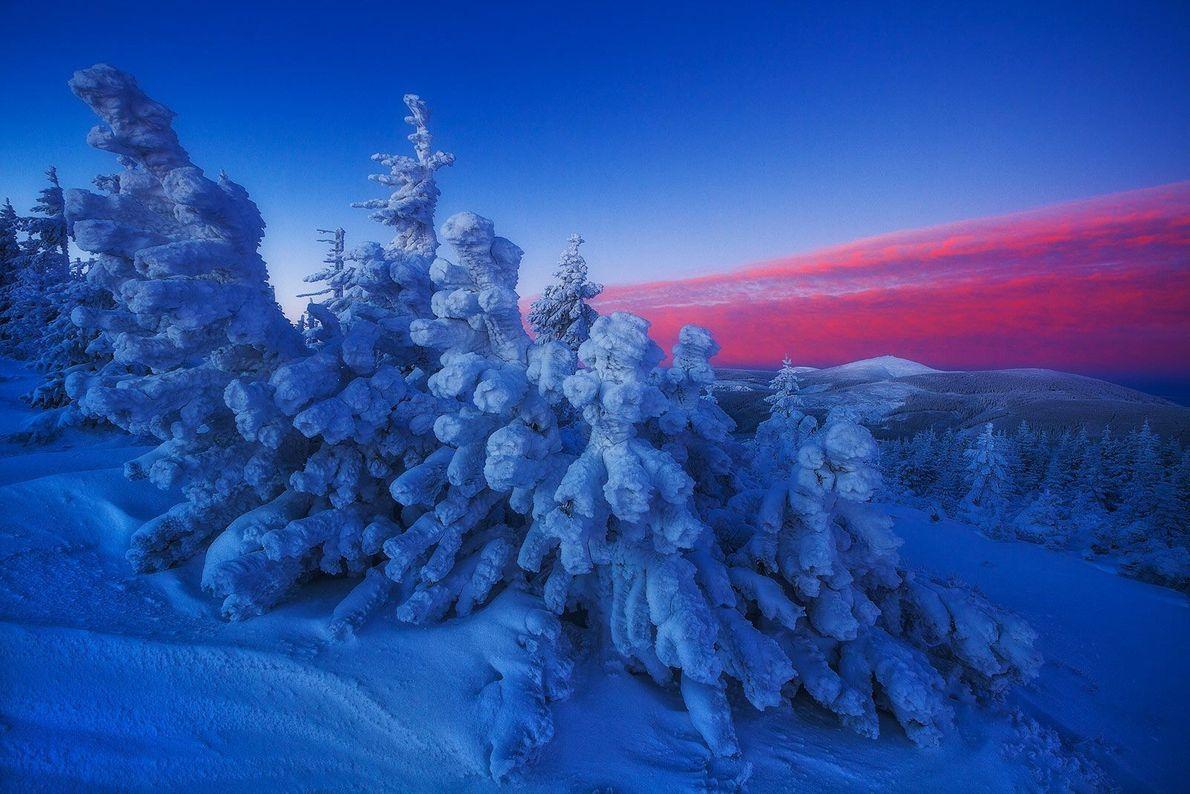 Al rojo vivo, hielo frío