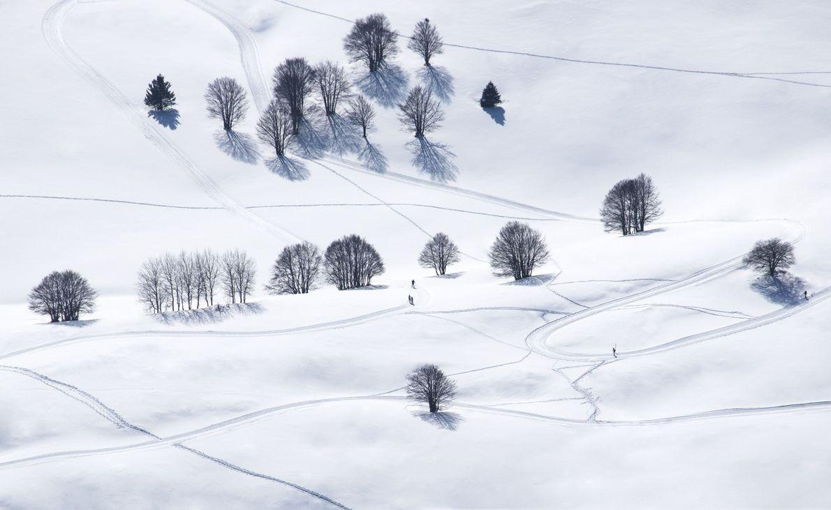 Esquí de primavera