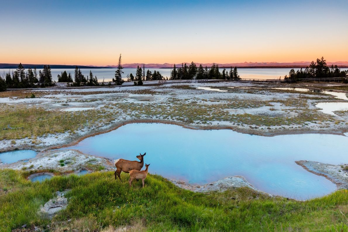 Amanecer en Yellowstone