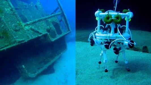 "Este ""perro robot"" podría ser algún día un explorador oceánico"