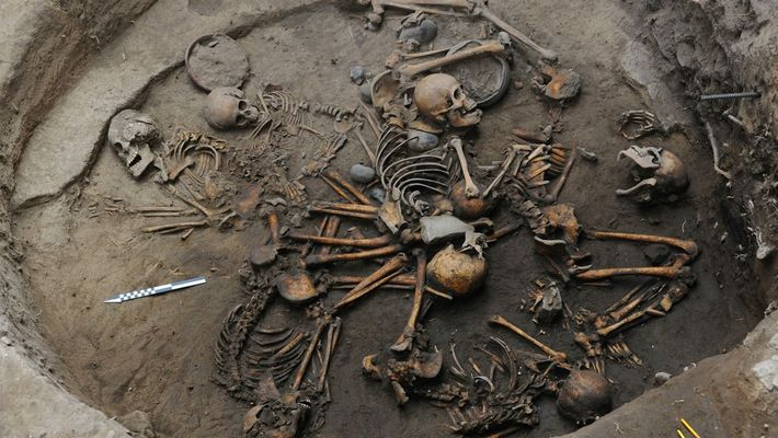 Esqueletos pre-aztecas encontrados acomodados en forma de espiral