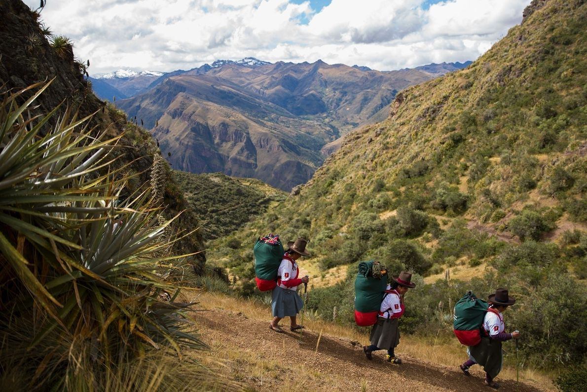 Las porteadoras recorren un camino de los Andes peruanos mientras llevan cargas que pesan casi 15 ...