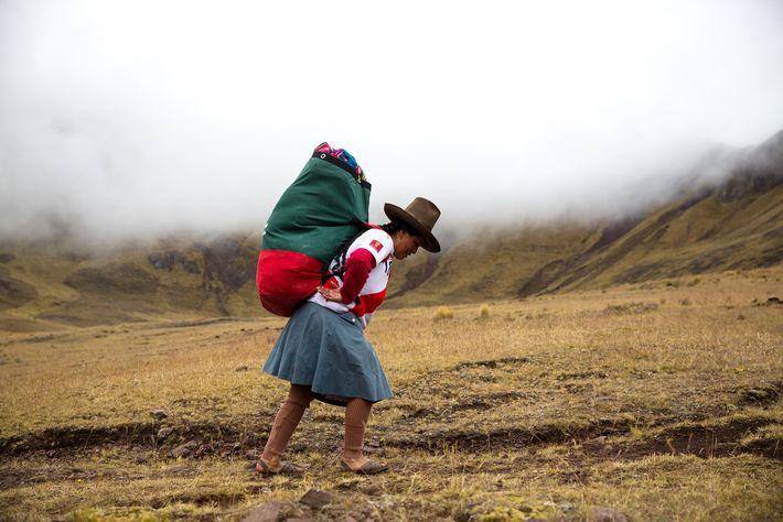 Si bien algunas partes de los picos de los Andes alcanzan los seis kilómetros sobre el ...