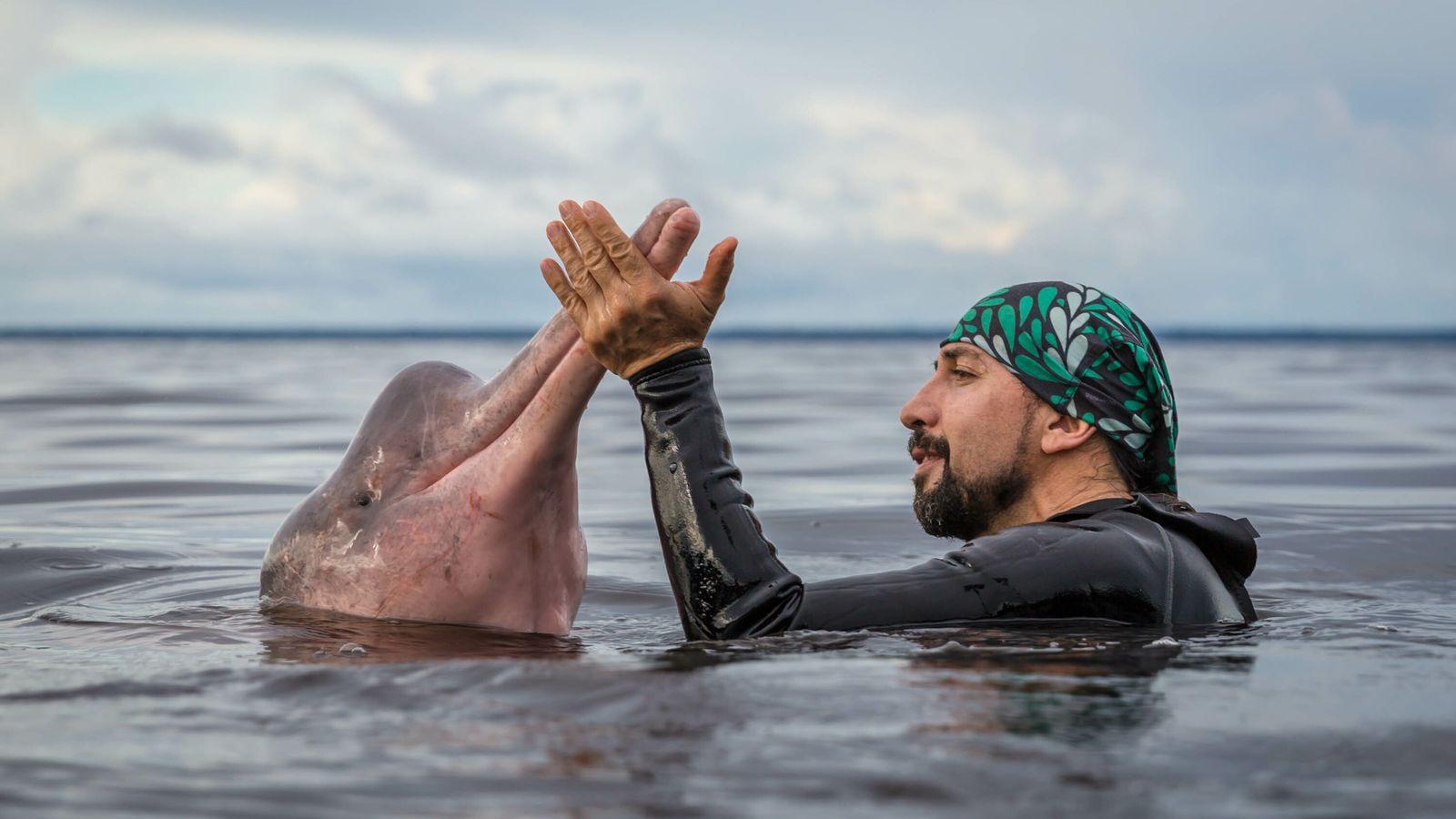 Biólogo marino colombiano y explorador de National Geographic.