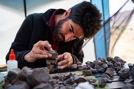 Argentina: Descubren restos de un dinosaurio hervíboro