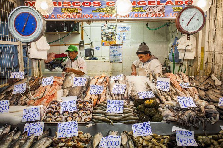 Proveedores de mariscos vendiendo sus pescados en el Mercado Central.