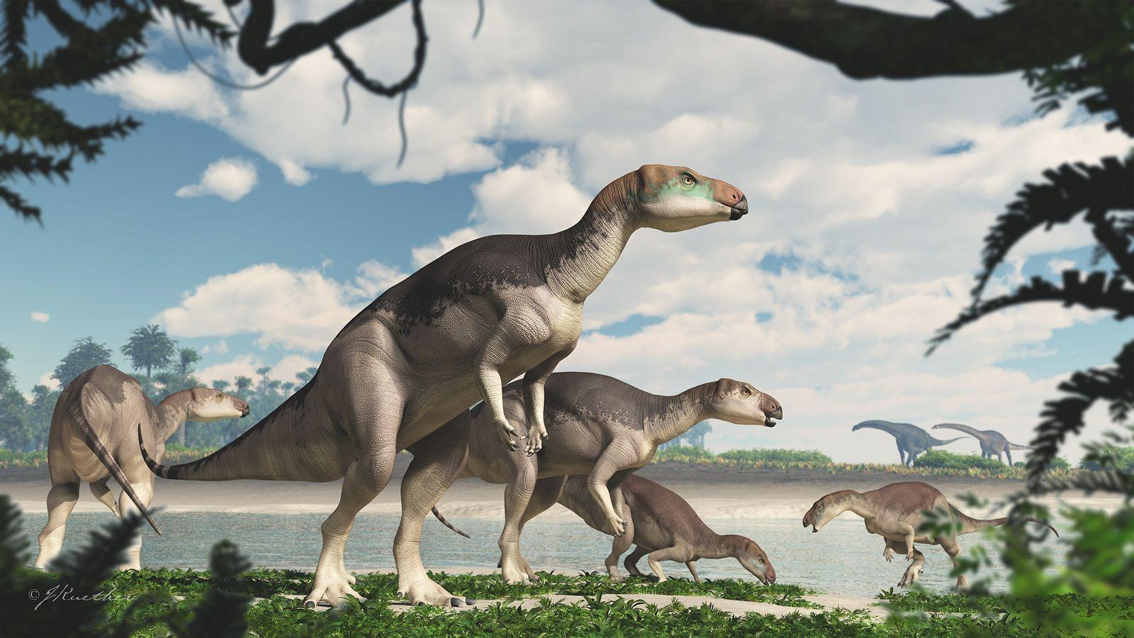 En esta ilustración, una manada de dinosaurios Fostoria camina por la orilla de un lago cerca ...