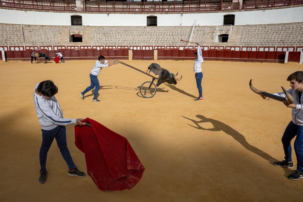El amor de Picasso por las corridas de toros surgió cuando era un niño, tras visitar ...