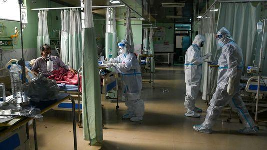 Un raro hongo está infectando a muchos de los pacientes de COVID-19 en la India ¿Por ...