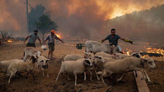 Las extremas olas de calor, las inundaciones y las sequías empeorarán si no se reduce el ...