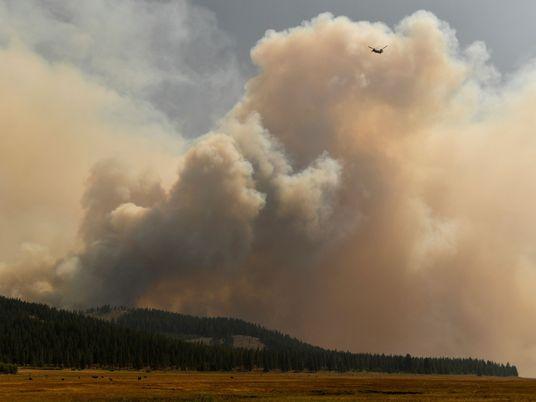 El humo de los incendios forestales está transformando las nubes, haciendo que sea menos probable que ...