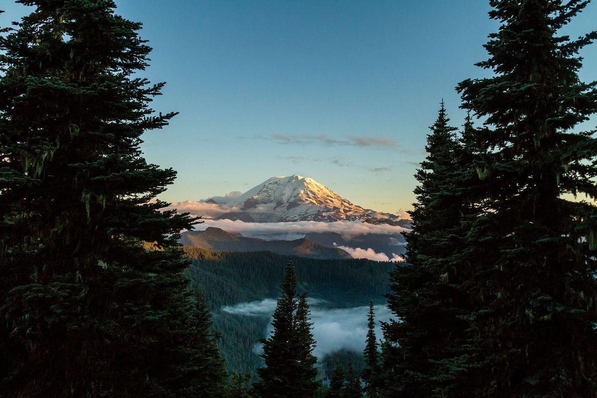 Mount Rainer, Washington
