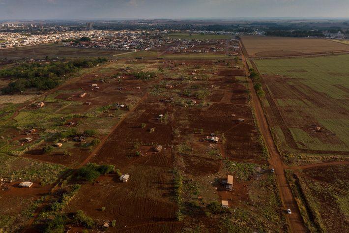 El pueblo guaraní-kaiowá reclama un territorio ancestral conocido como Ñu Vera, ubicado fuera de la Reserva ...