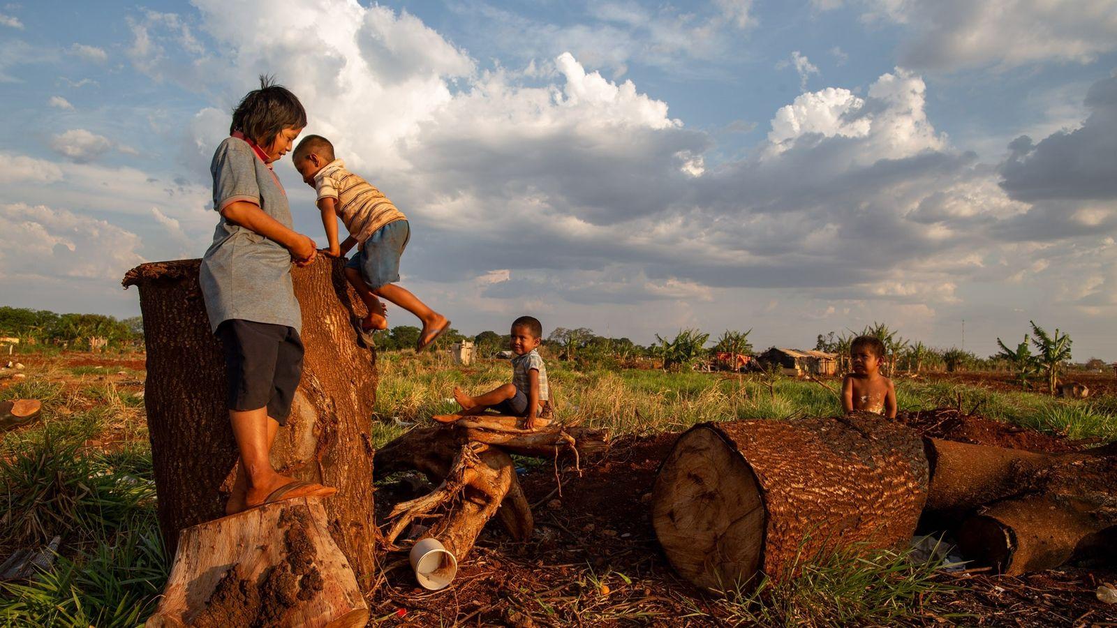 Tres hermanos kaiowá y un vecino juegan en Ñu Vera, cerca de Dourados, Brasil. Al hermano ...
