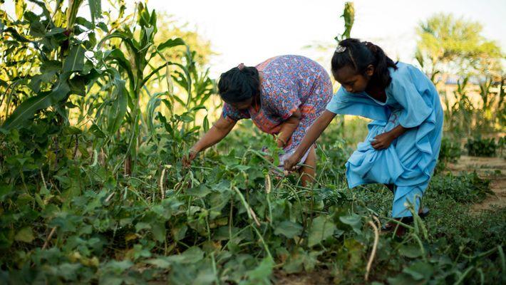 Una mujer y un niño tienden a comer frijoles guajiro en Manaure, Colombia. Durante los últimos ...