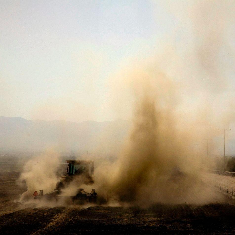 La producción de carne conduce a miles de muertes anuales relacionadas con la calidad del aire, ...