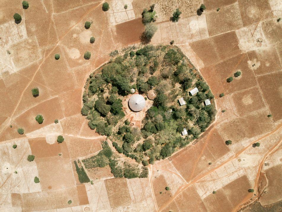 Aúnan esfuerzos para salvar los bosques que quedan en el norte de Etiopía