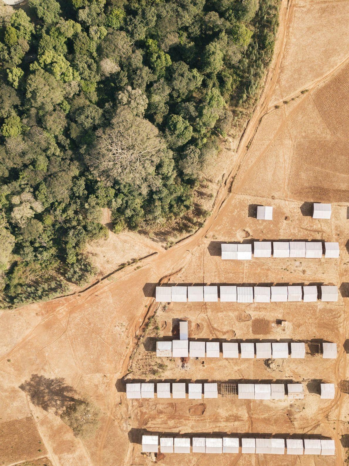 Nuevas viviendas construidas por el gobierno chocan contra los límites del bosque eclesiástico en la iglesia ...