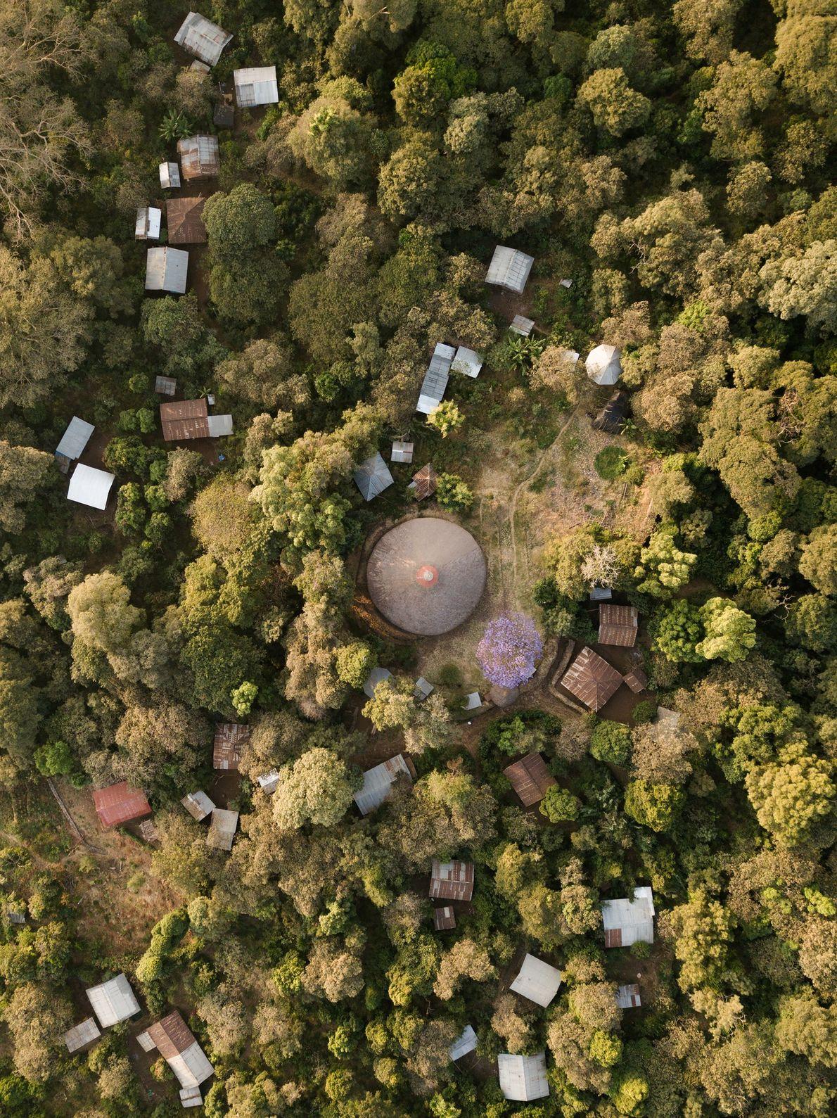 Copas de árboles frondosas y maduras cubren la iglesia Betre Mariam en la periferia del lago ...