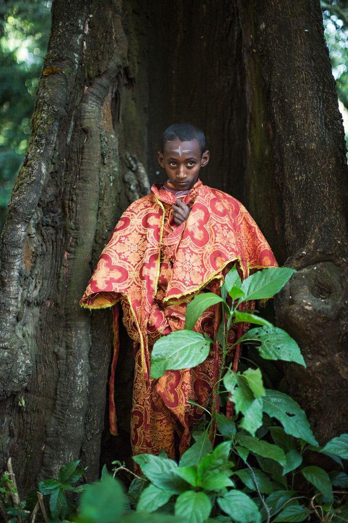 Un joven novicio se apoya en un árbol que crece en el bosque que rodea la ...