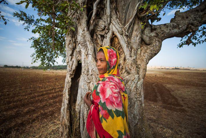 Un niño en los campos arados cerca de la iglesia de Bitsawit Mariam en Gondar del ...