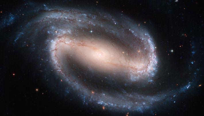 Esta emblemática imagen del Hubble de la galaxia espiral NGC 1300 está llena de detalles: estrellas ...