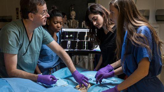 ¿Deberían los cadáveres digitales reemplazar a los reales?