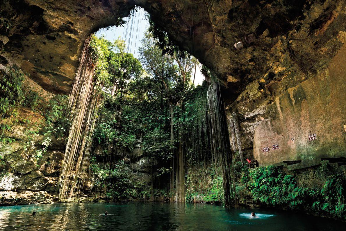 cenote_mexico