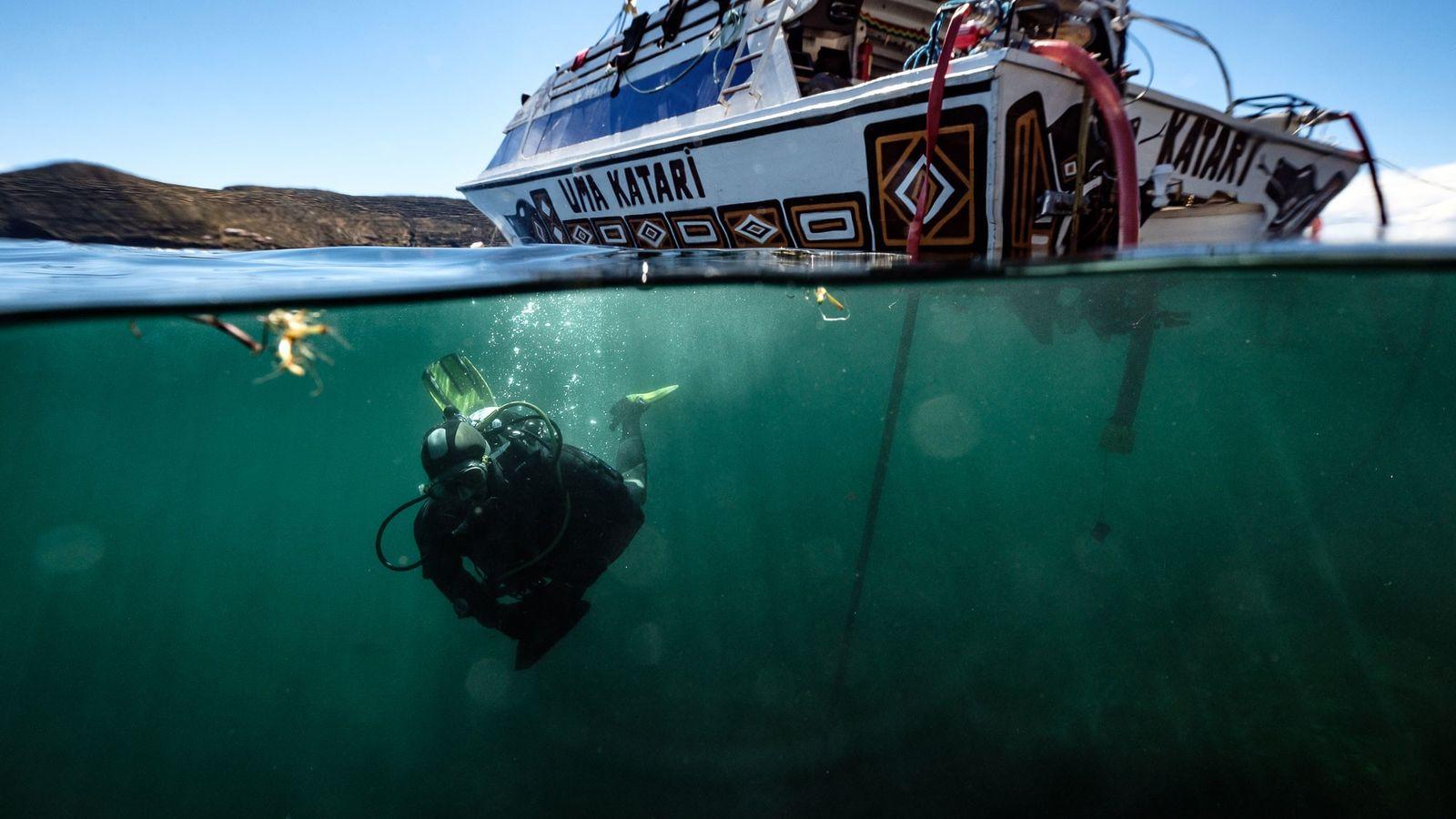 Un miembro del equipo de investigación se sumerge en el lago Titicaca, que se extiende a ...