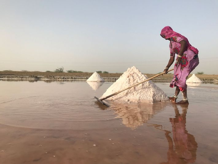 Un trabajador de la sal se esfuerza mucho cerca de la antigua ciudad de Jaipur, en ...