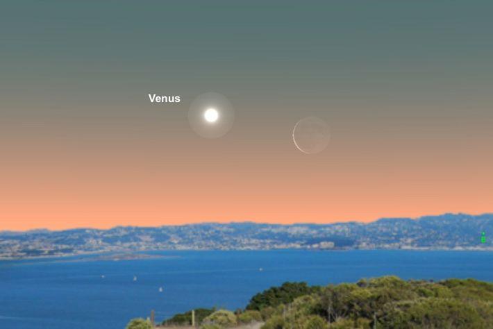 La mañana del 1 de junio, Venus estará cerca de la luna creciente.