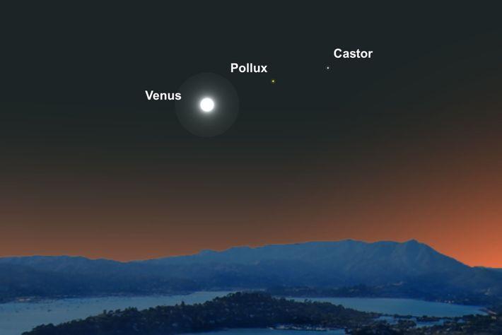El 10 de junio, el brillante planeta Venus formará una línea con las estrellas gemelas de ...