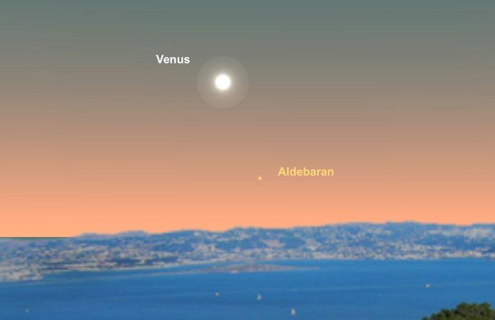 El 16 de junio, observa a Venus cerca de la estrella Aldebarán.