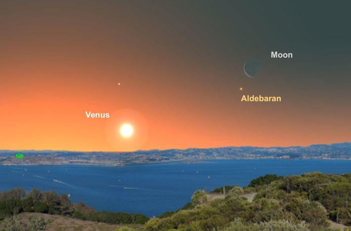 La luna creciente ayudará a los observadores a encontrar la estrella Aldebarán en los cielos previos ...