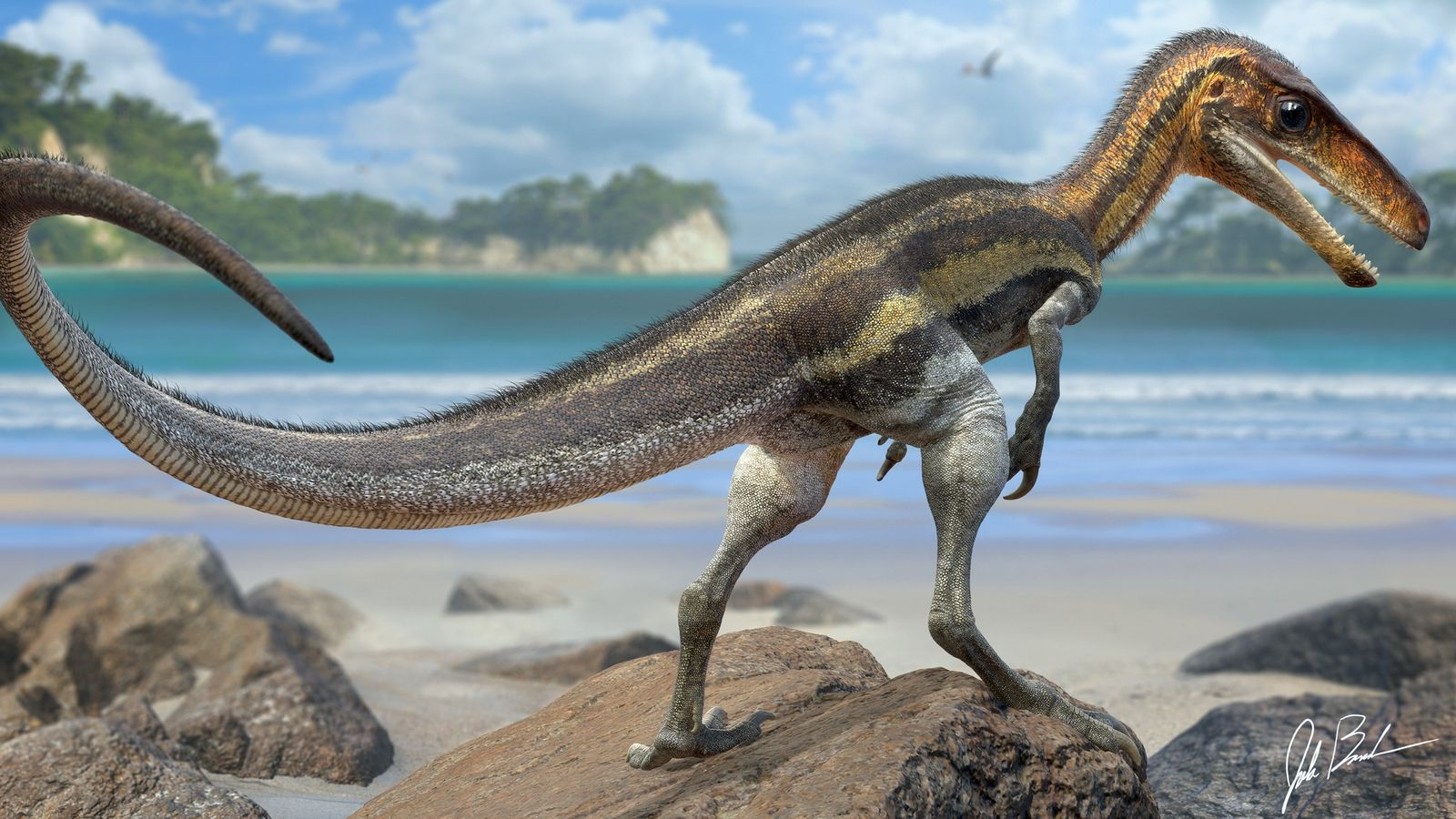 Las escamas conservadas de la cola del Juravenator, un pequeño dinosaurio depredador que vivió hace 150 ...