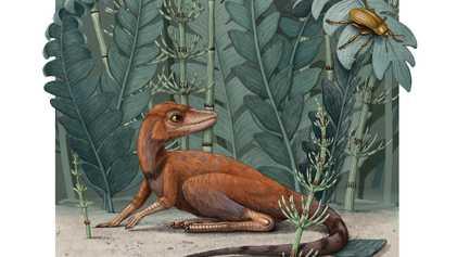 ¿Cómo la extinción masiva más letal de la historia del mundo contribuyó al auge de los ...