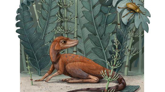 El Kongonaphon fue un reptil del tamaño de una rata que vivió en el período Triásico, ...