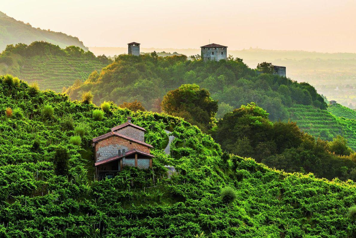 Le Colline del Prosecco di Conegliano a Valdobbiadene, Italy