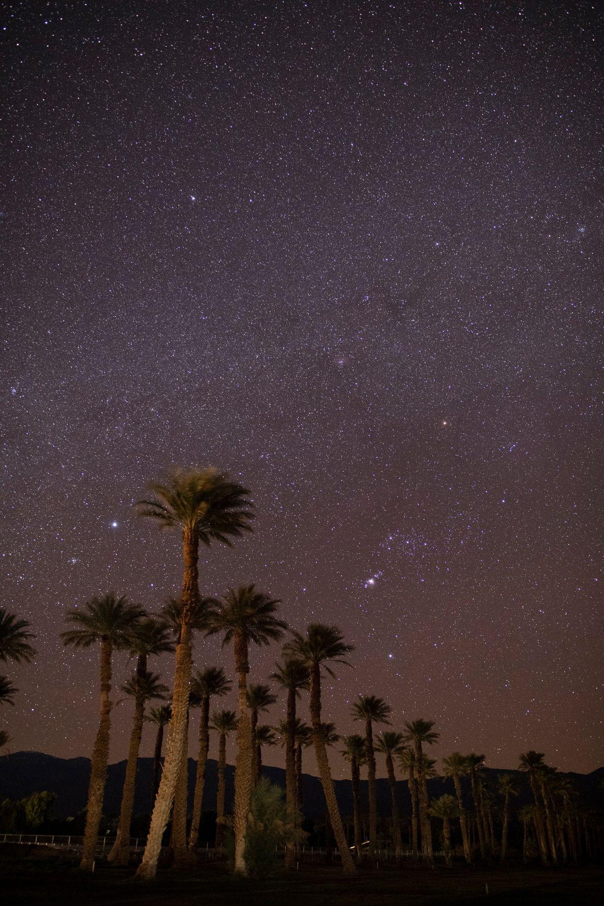 Sobre las palmeras de Furnace Creek, en el valle de la muerte, Sirius, la estrella más ...