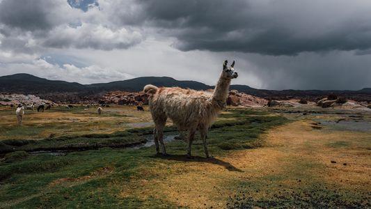 Descubre imágenes únicas de maravillas naturales de Sudamérica