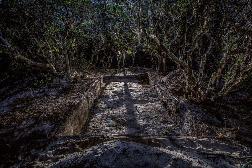 Gracias a las excavaciones en el sitio de una ciudad nativa norteamericana en la isla de ...