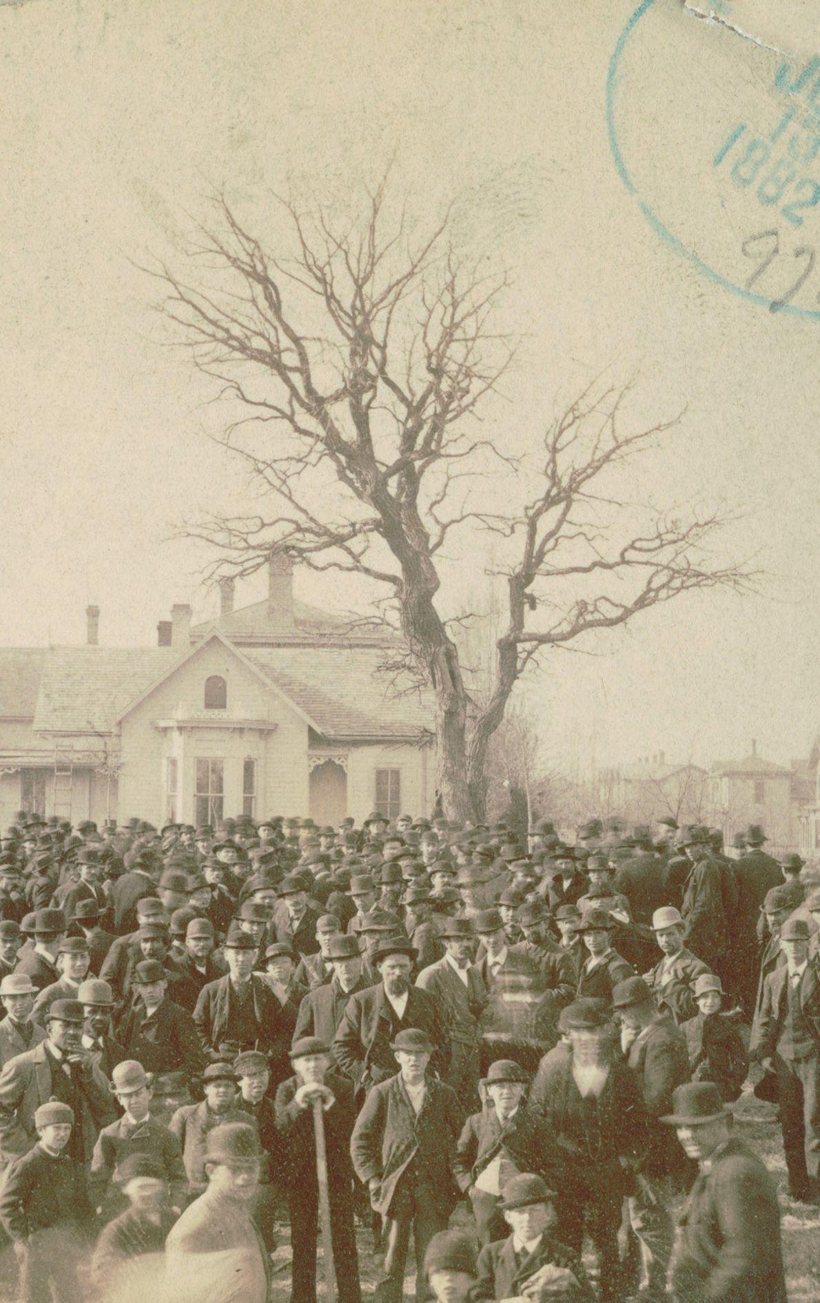 Linchamiento de Frank MacManus, Minneapolis, MN, 1882.