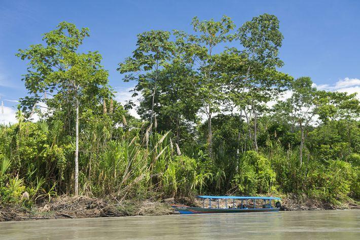 Un bote en el río Madre de Dios en Perú