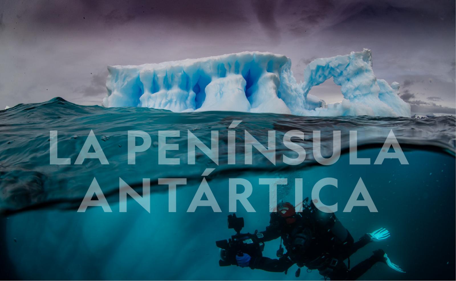 Documental La Península Antártica - National Geographic Pristine Seas