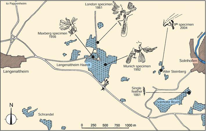 Un mapa de la región de canteras en Alemania donde cinco especímenes de Archaeopteryx han sido ...