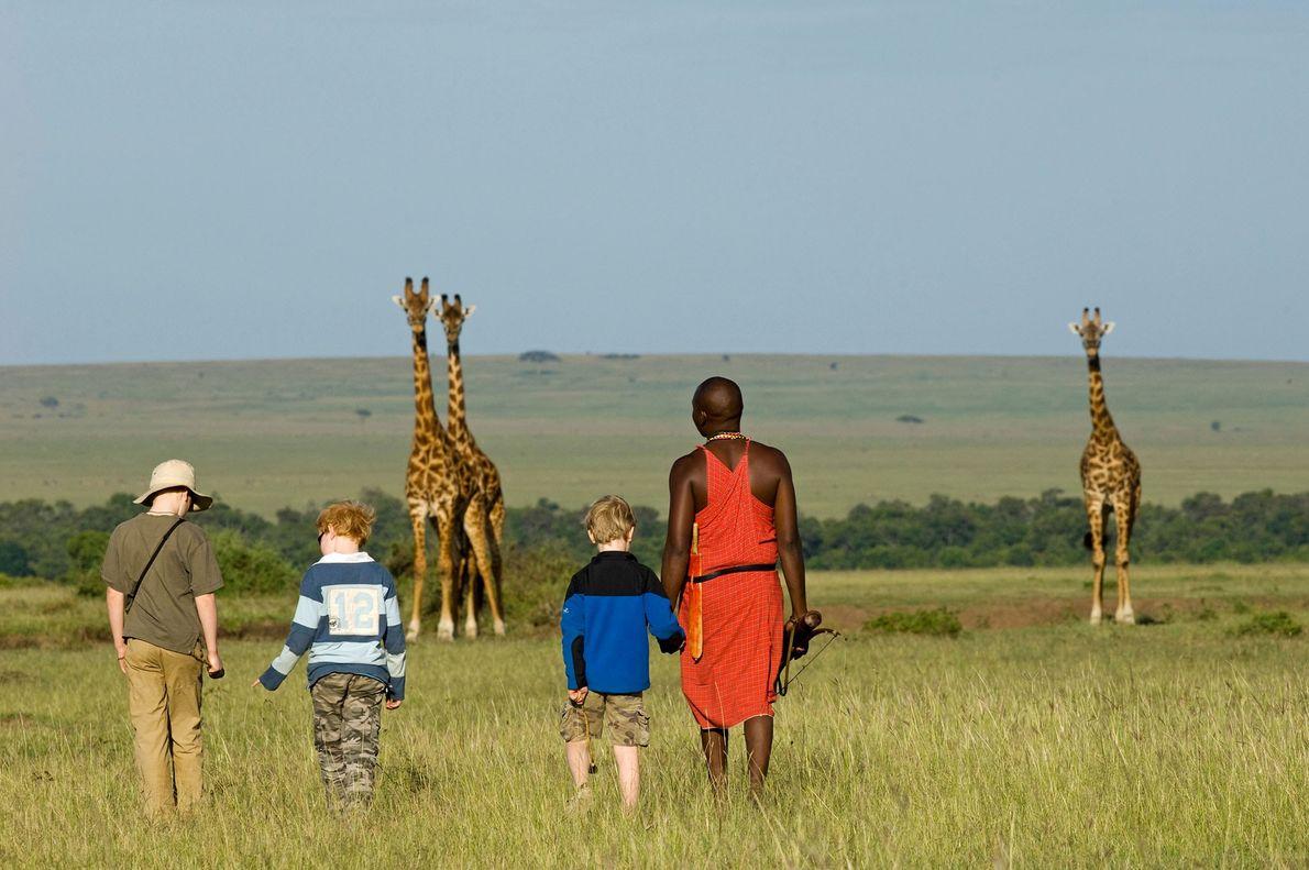Un guía Masái acompaña a algunos pequeños turistas cerca de tres jirafas en la Reserva Nacional ...