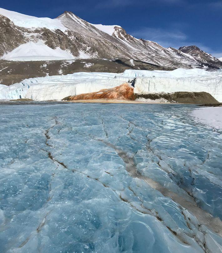 """Al final del glaciar Taylor, una salmuera hipersalina conocida como """"Blood Falls"""" fluye hacia la superficie ..."""