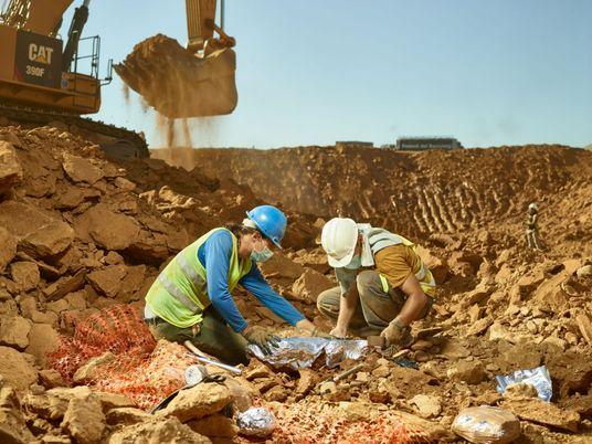 Valiosos fósiles de primates hallados en un vertedero cercano a Barcelona
